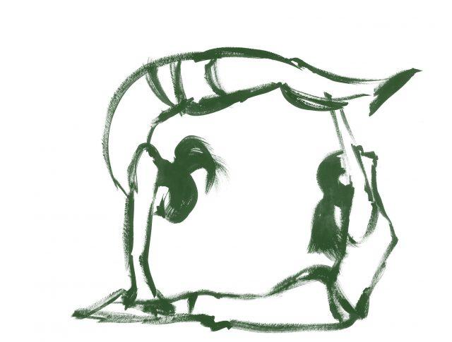 dues gimnastes