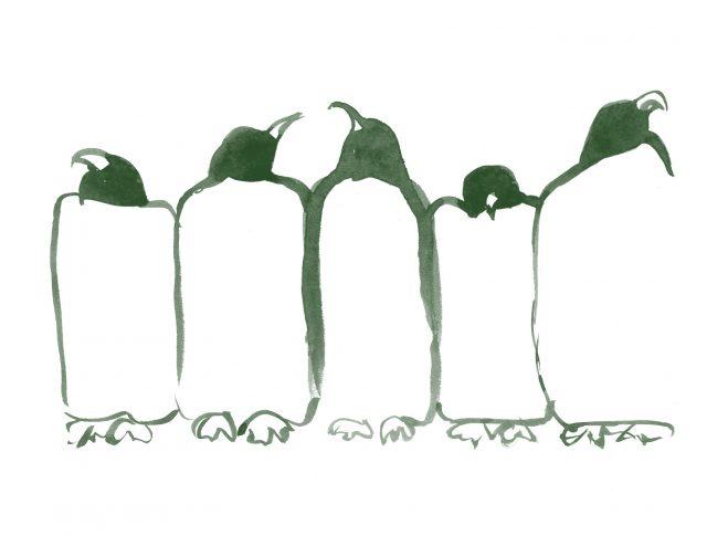 Grup de pingüins