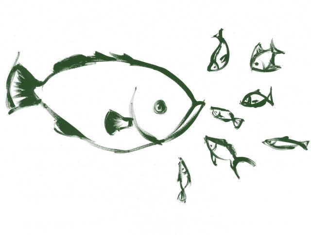 Peix gran i peixos petits
